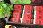 【月餅評比】玫瑰荔枝土鳳梨酥(12入禮盒)---2盒免運費 4