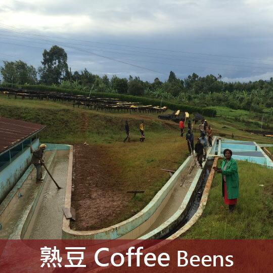 肯亞麒麟雅加巴拉格威合作社卡果果高地處理廠