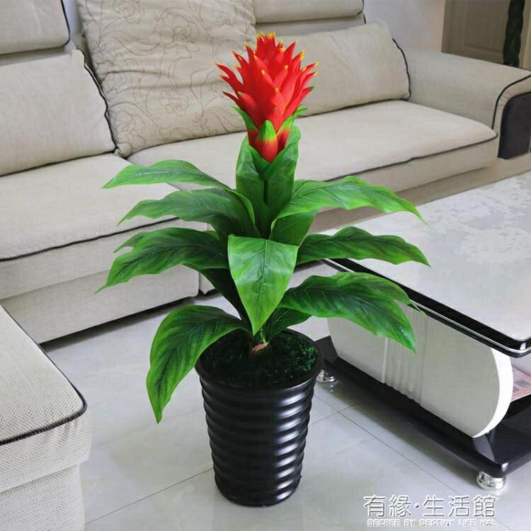 假樹鴻運當頭仿真綠植物盆景栽落地大型室內客廳假花塑料裝飾花藝  聖誕節狂歡購