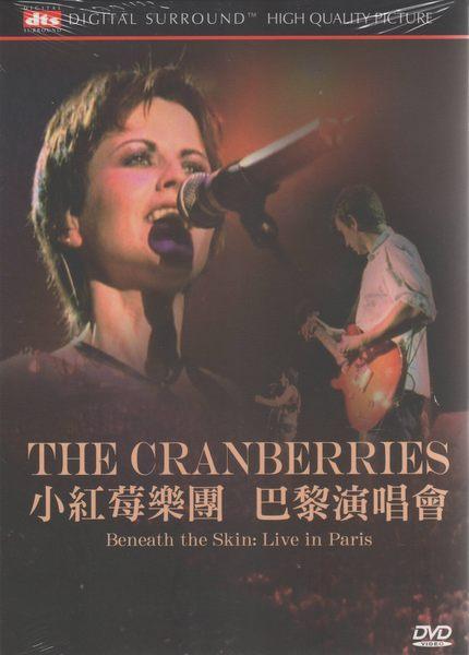 小紅莓樂團 巴黎演唱會 DVD THE CRANBERRIES JUST MY IMAGI