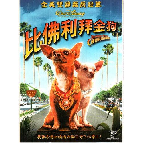 比佛利拜金狗DVD Beverly Hills Chihuahua 安迪賈西亞 潔美李寇蒂