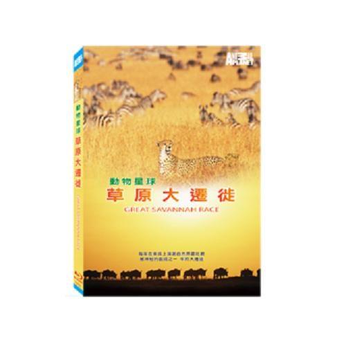 草原大遷徙 藍光BD GREAT SAVANNAHRACE 東非牛羚大遷徙斑馬瞪羚 非洲掠食動物 (音樂影片購)