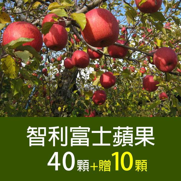 家庭必備【築地一番鮮】智利富士蘋果40顆*1箱(加碼送10顆)▶全館滿499免運