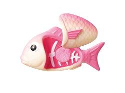 【淘氣寶寶】日本 Toyroyal 樂雅 切切樂系列-紅魚 9921