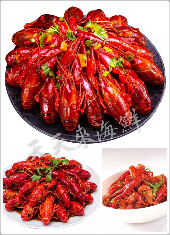 網紅麻辣小龍蝦 重量:750克