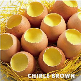 《查理布朗》雞蛋布丁♥熱銷限量伴手禮☆團購的最愛☆(自取/消費滿$1500台北市區可免運外送到府)