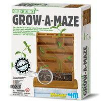 【 4M 科學探索 】Grow-A-Maze 植物迷宮