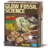 【 4M 美勞創作】Glow Fossil Science 夜光化石科學