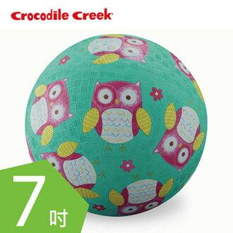【悅兒園婦幼生活館】美國 Crocodile creek 7吋兒童運動遊戲球-親親貓頭鷹(19cm)