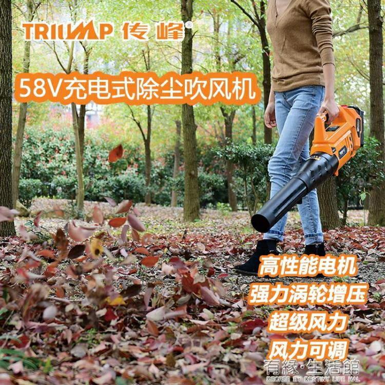 58V手提大功率充電式工業吹風機無線馬路吹樹葉吹葉機鼓風機 七色堇 交換禮物 送禮