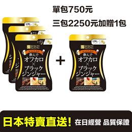 日本 SVELTY 黑生薑 酵素 60粒*4包