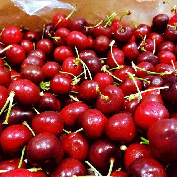 【2公斤免運】樂天最便宜! ❄極好食❄【新鮮空運搶先吃】新鮮智利櫻桃-Jumbo/-2kg|平均1kg=639元!