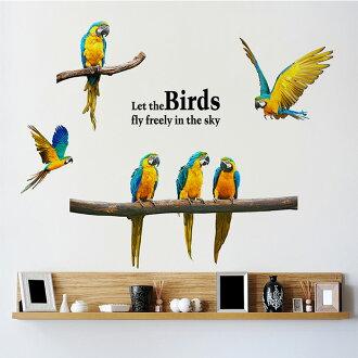 DIY無痕壁貼 鸚鵡 牆貼 創意壁貼【YV6782】快樂生活網