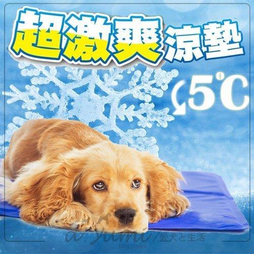 美國good2go》高質感防咬寵物降溫涼墊M號58.4x45.7cm
