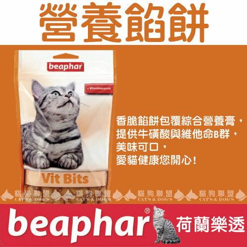 +貓狗樂園+ 荷蘭beaphar【樂透愛貓營養餡餅。小。35g】90元