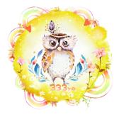 山夜貓頭鷹親子生活館