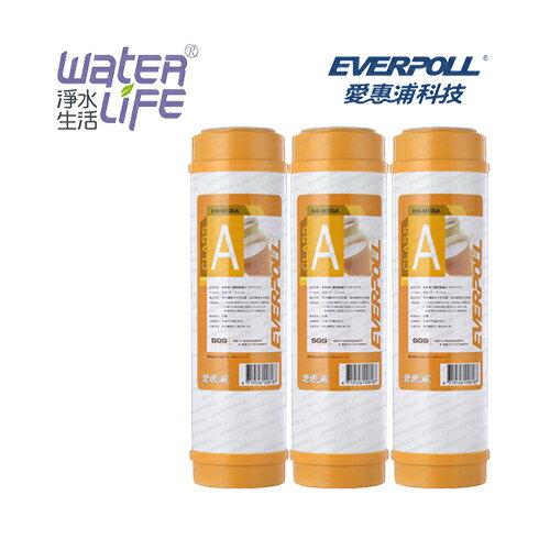 【淨水生活】《EVERPOLL 愛惠浦科技》道爾樹脂濾心 EVB-M100A  (3入裝)