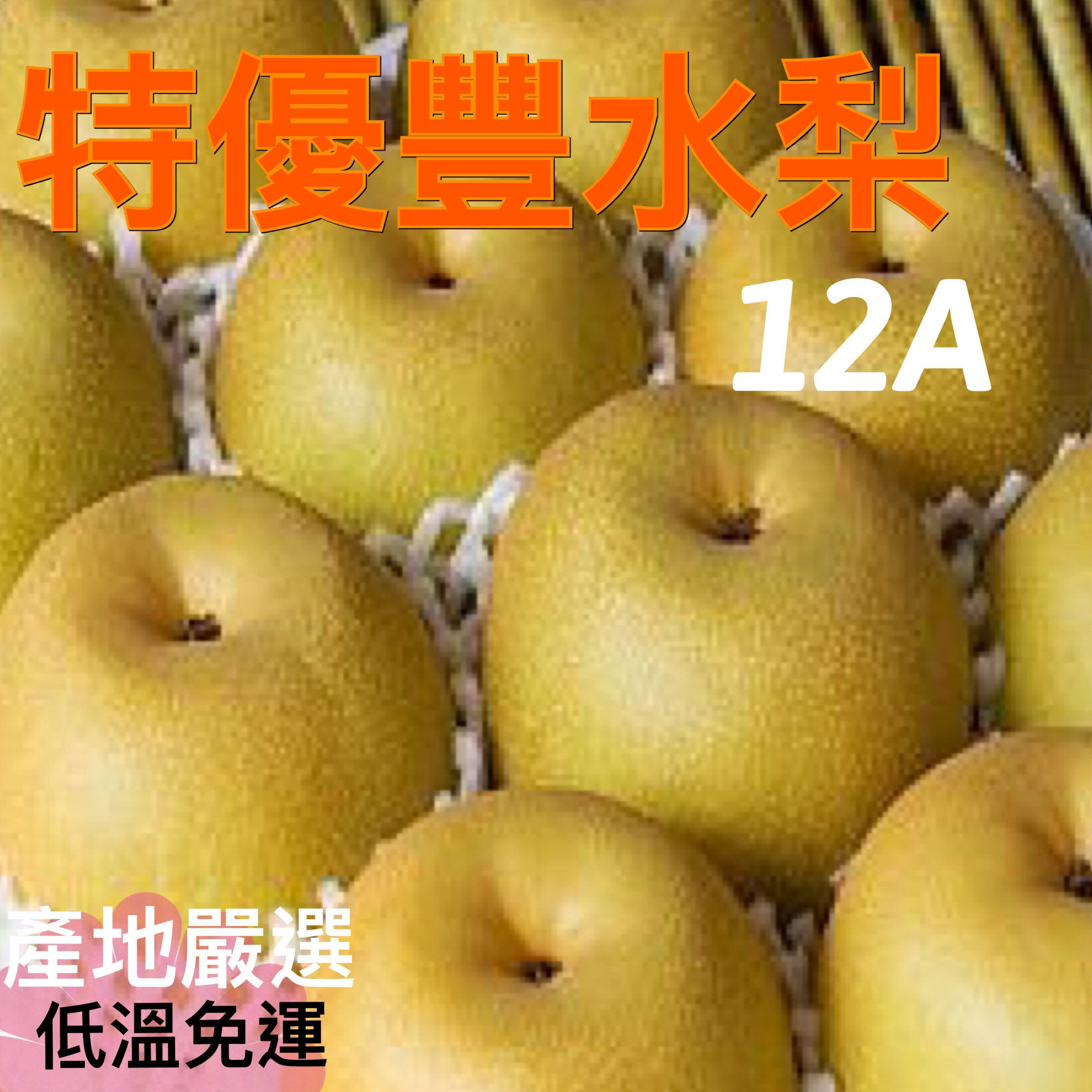 特優等〈低溫免運〉豐水梨禮盒10粒裝【皇家果物】