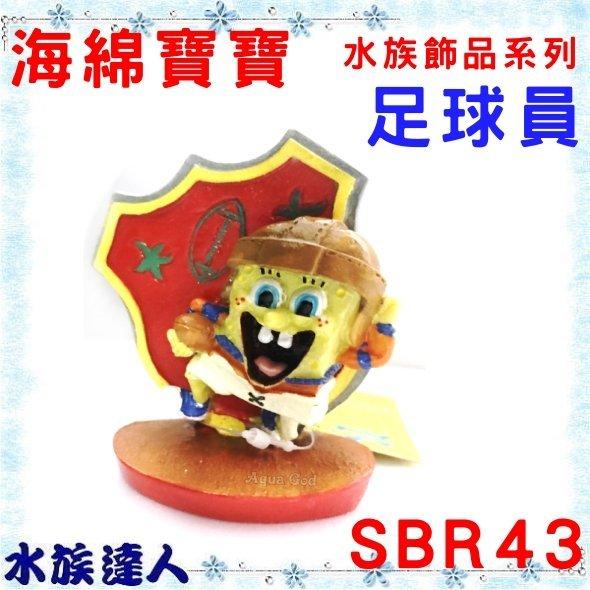 【水族達人】美國授權販售 PENNPLAX-龐貝《足球員 海綿寶寶 水族飾品系列 SBR43》裝飾 造景 飾品 公仔