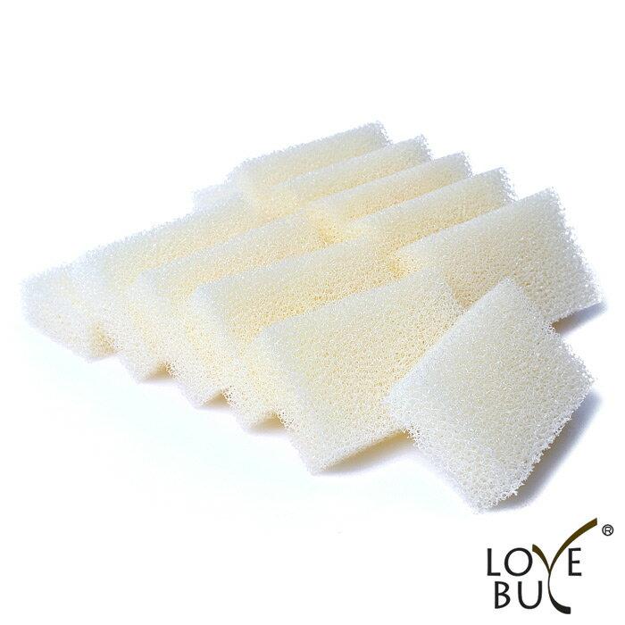 Love Buy 韓國神奇魔術樹脂菜瓜布x12入