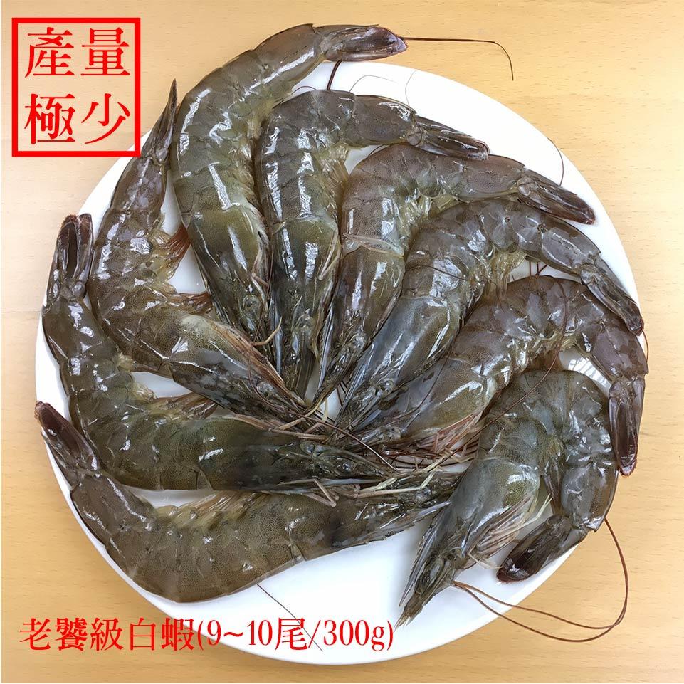 【蝦覓世界】特大尾生鮮白蝦x2贈白嫩雞胸 1