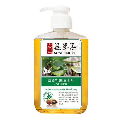 古寶無患子草本洗手乳小黃瓜蘆薈330g【愛買】