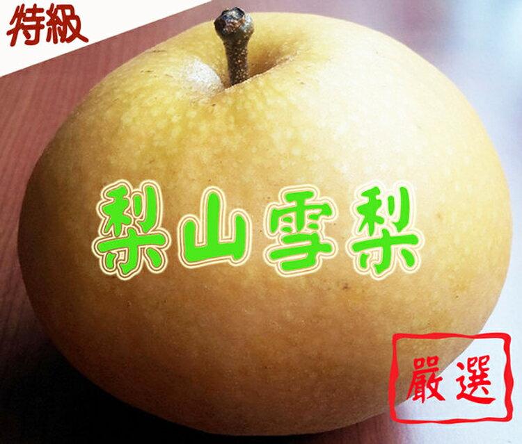 ✿仲菁✿台灣梨山高山特級雪梨5粒裝-免運費