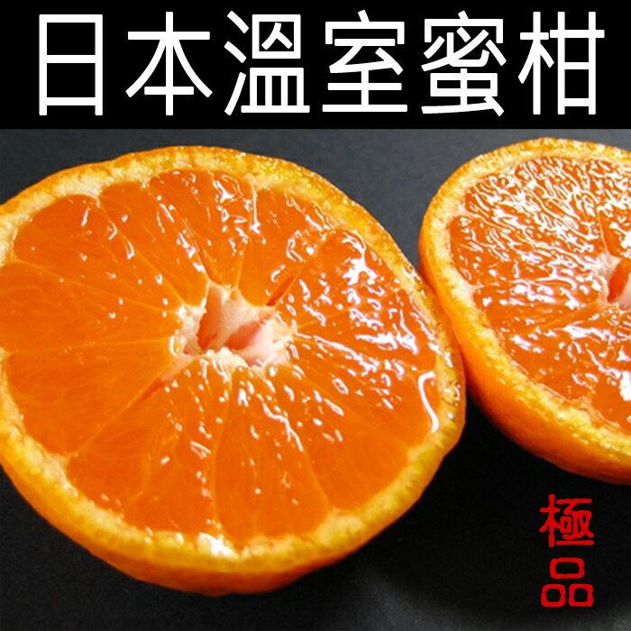 ✿仲菁✿日本空運進口大分溫室蜜柑-免運費