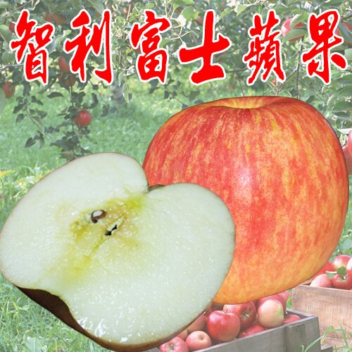 ✿仲菁✿智利進口富士蘋果5粒禮盒裝-免運費