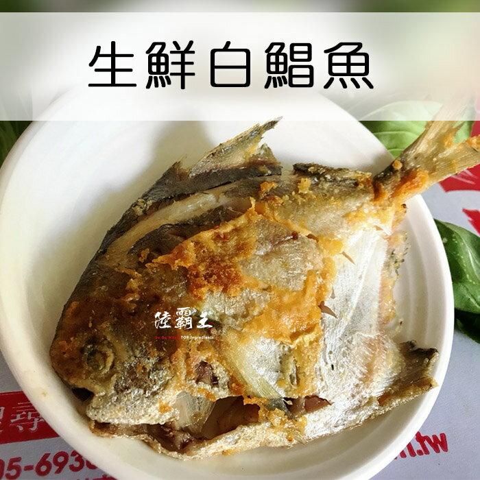 ☆野生白鯧魚☆9-10入 / 盒【陸霸王】 1