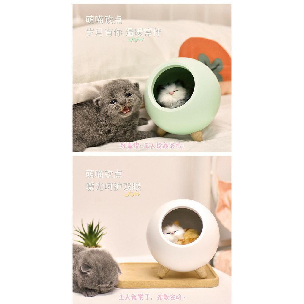 小萌寵小屋氛圍小夜燈led家用臥室床頭伴睡燈usb充電創意可愛寵物貓咪 4