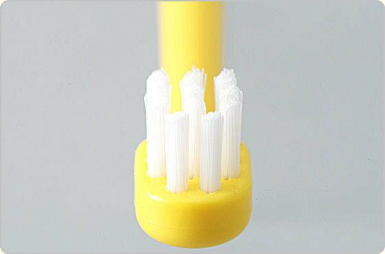 『121婦嬰用品館』巧虎幼兒牙刷(2-4Y) 3