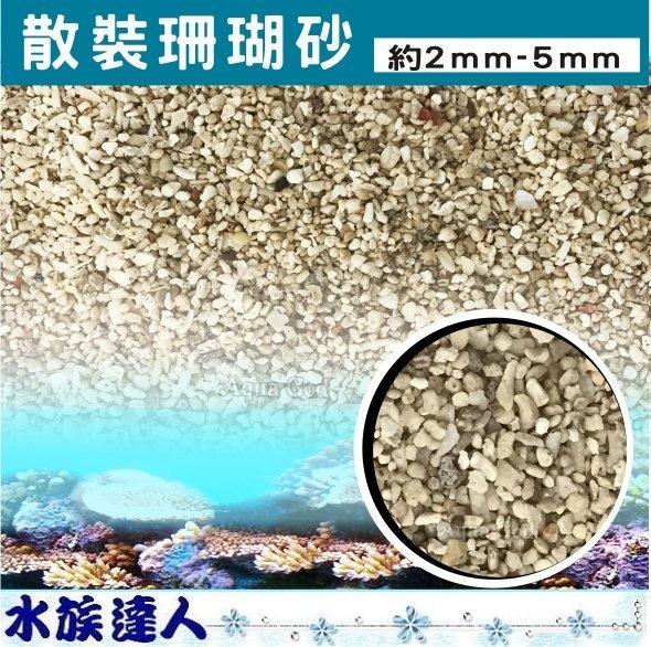 ~水族 ~~底砂~~3號散裝珊瑚砂 5kg 2^~5 mm ~菲律賓砂 貝殼砂 造景