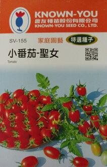 【尋花趣】小番茄-聖女 農友種苗 特選蔬果種子 每包約6粒 保證新鮮種子