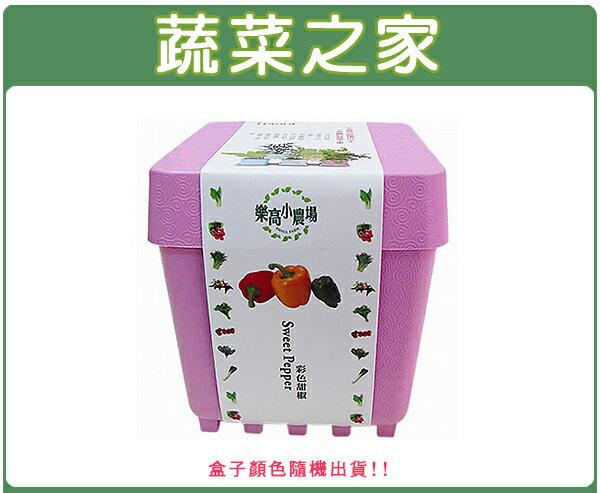 【蔬菜之家004-D02】iPlant小農場系列-彩色甜椒
