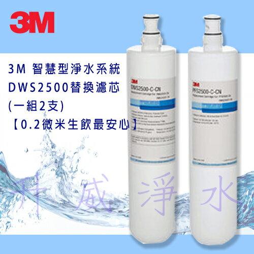 3M智慧型淨水系統DWS2500替換濾芯(一組2支)【0.2微米生飲最安心】【分期0利率】
