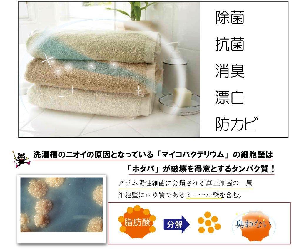 日本抗菌綜合研究所 HOTAPA 天然貝殼粉 洗衣槽抗菌清潔錠 100 / s55480。日本必買 樂天代購 (1080*0.1)。件件免運 3
