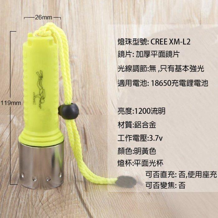 27044-137-興雲網購【L2手電筒2000mAh配套】CREE XM-L2強光潛水手電筒 頭燈 工作燈