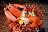雙層戰艦龍蝦丼【南京店限定】★嚴選波士頓龍蝦★每日限量★樂天獨享★約會推薦★美食餐券★電子票券★餐券 2
