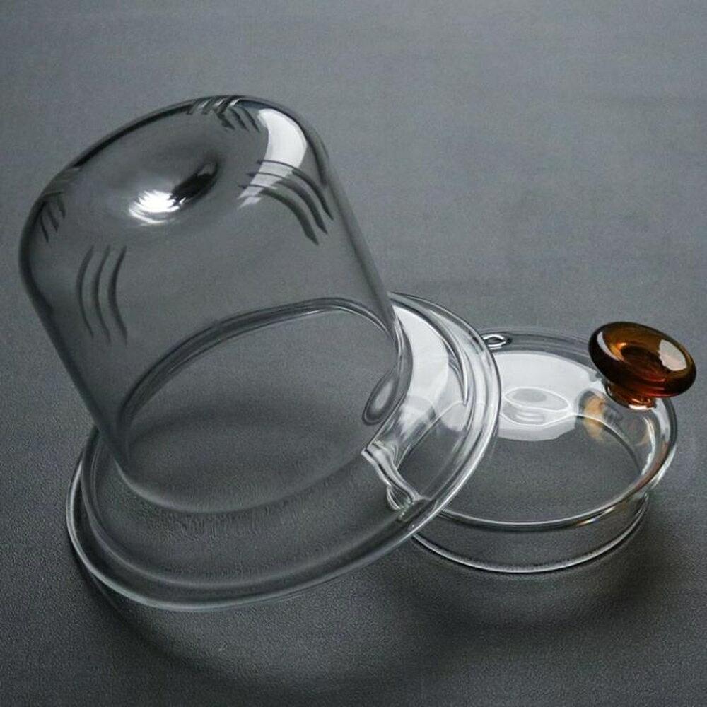 泡茶杯 茶杯茶水杯家用加厚透明耐熱玻璃茶壺電陶爐加熱煮茶器花茶壺過濾泡茶具套裝 99免運