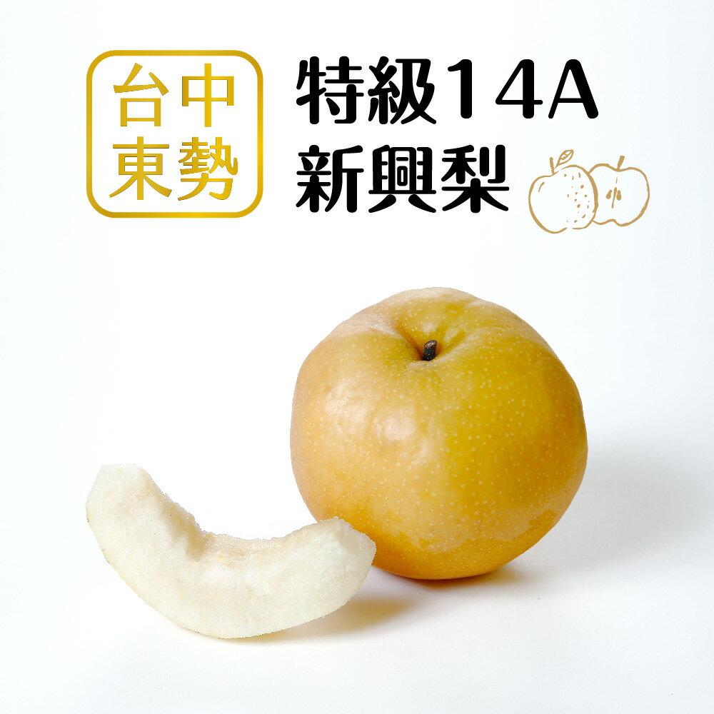 【好實選果】【1入】頂規特大顆!特級14A新興梨 (500g/顆)