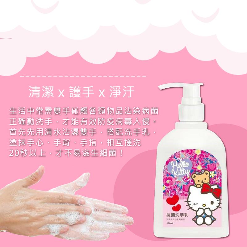 防疫消毒週【特價】【三麗鷗 潔淨洗手乳 250ml】hello kitty 洗手乳 消毒 淨味除臭 溫和洗手乳 【AB503】 6