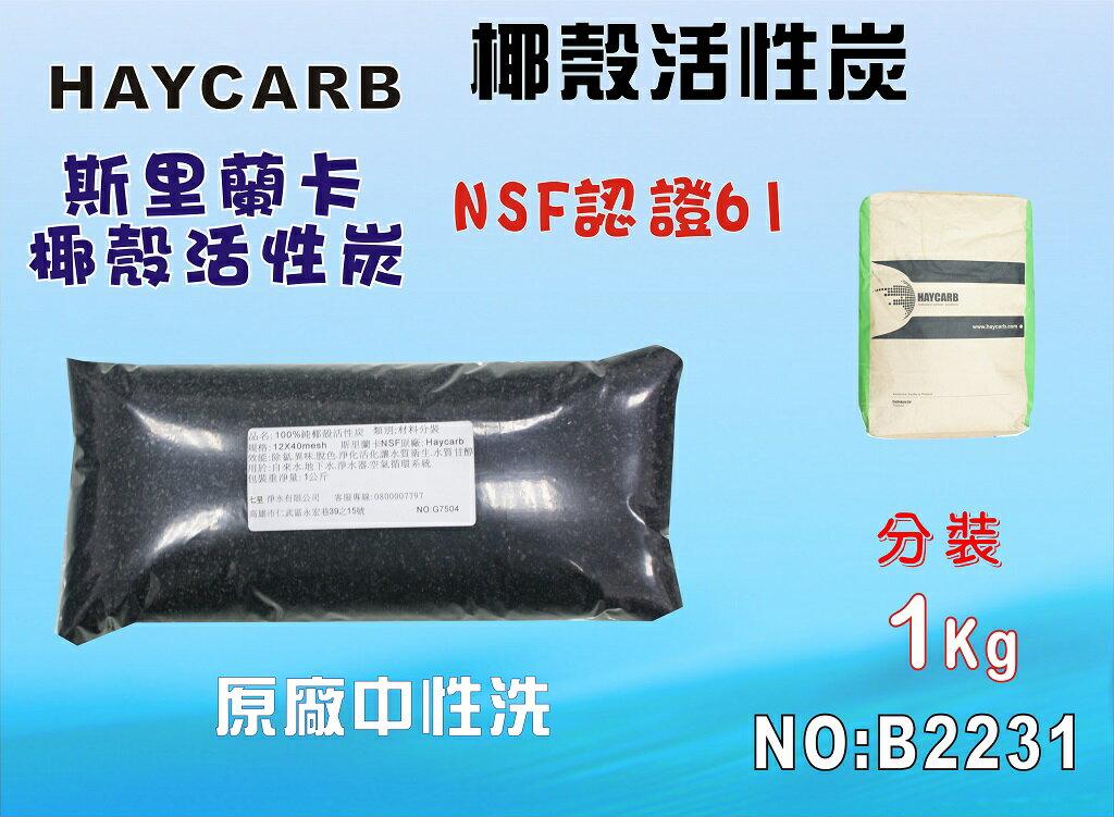 中性椰殼活性炭100%低炭粉除氯淨水器原料濾水器 FRP桶濾心填充濾心過濾器 貨號B2231  ~七星淨水~