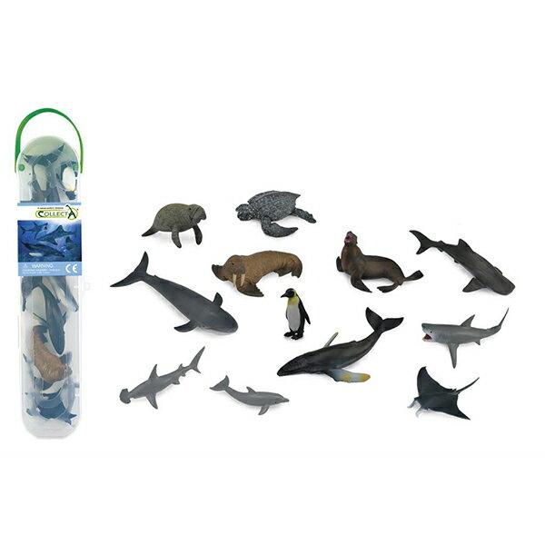 【COLLECTA】盒裝迷你海洋動物-1