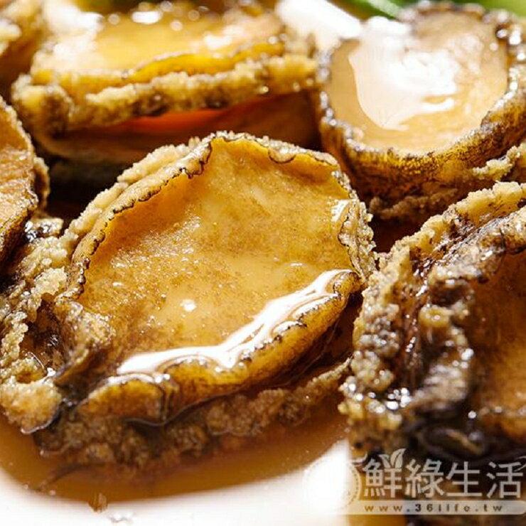 【鮮綠生活】極鮮帶殼鮑魚(6顆裝)免運嚐鮮價