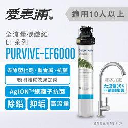 【台灣愛惠浦】EVERPURE 強效碳纖維長效型淨水器(PURVIVE-EF6000)
