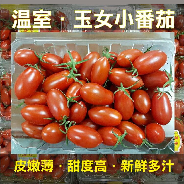 免運!保證新鮮皮薄多汁。團購價超甜玉女小番茄最低每盒169元! (600g/盒)
