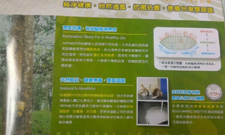 [床工坊]( 英國品牌)標準型乳膠枕----全年供應(德國與台灣雙認證) 0