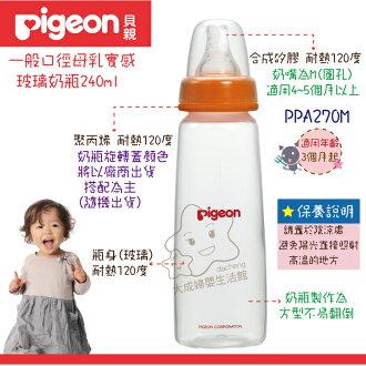 【大成婦嬰】Pigeon 貝親 母乳實感 標準口徑玻璃奶瓶 (PA270M) 240ml