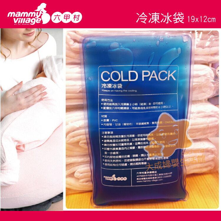 【大成婦嬰】mammy village 六甲村 冷凍冰袋 98804 保冷劑 外出 保冷 延長冷藏商品時間 1